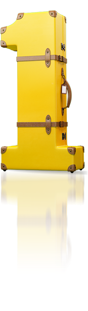 1Cover Suitcase